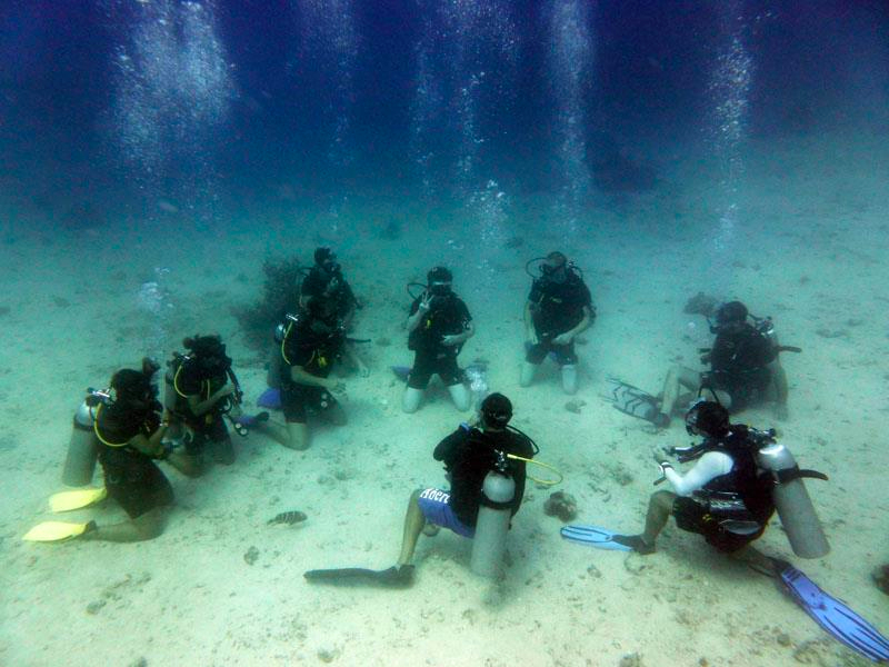 Photos of diving koh tao with davy jones locker - Padi dive courses ...